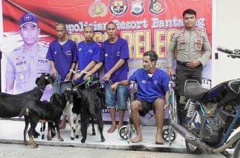 Pelaku dan barang bukti hasil pencurian ternak yang berhasil diamankan Tim T4P Polres Bantaeng (11/03/2019).