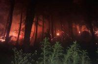 Bencana kebakaran lahan.