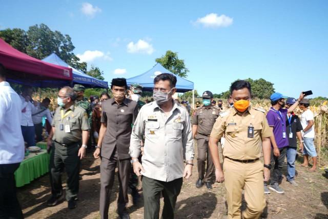 Kunjungan Menteri Pertanian RI ke Bantaeng.
